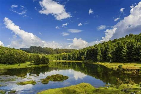 30 Things To Do In Ooty For Nature & Adventure Lovers In 2020!