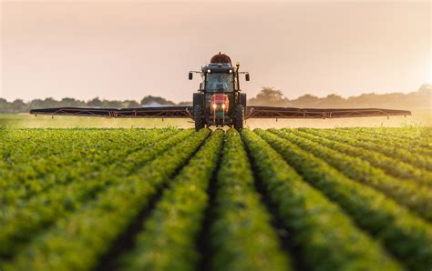 Did Monsanto Ignore Evidence Linking Its Weed Killer to