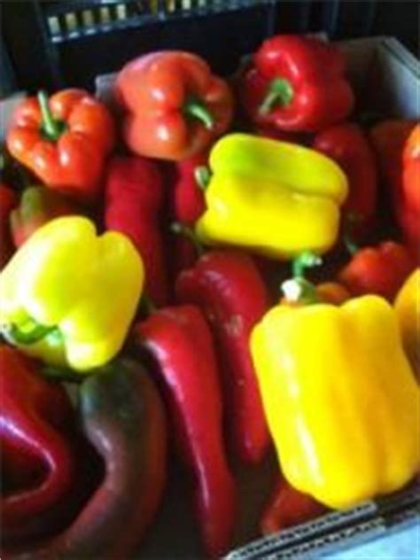 Alphabetically list of Vegetables - Every thing you need