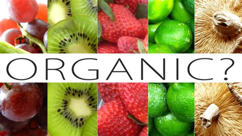 What Does Organic Mean? - Glamazini