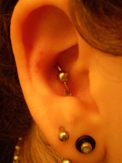 Orbital Piercing Pain, Aftercare, Jewelry, Pictures   Body