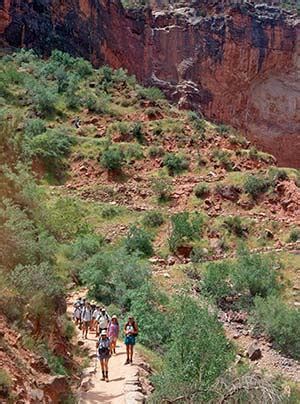 Guided Tours - Grand Canyon National Park (U
